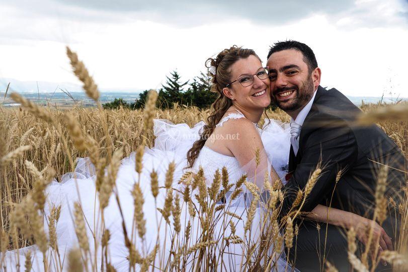 Classique et efficace champ de blé