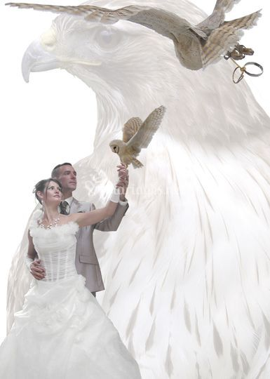 Mariage Equivol