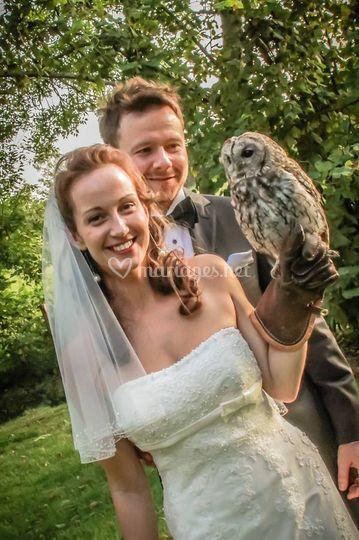 Chouette hulotte et les mariés