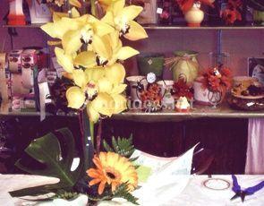Orchidée jaune pâle