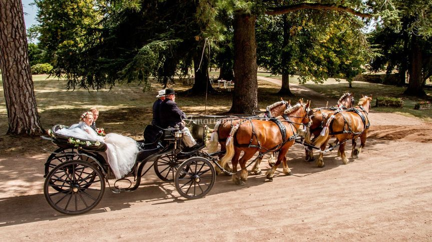 Parc du château de Chaumont