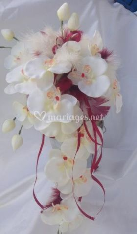 Orchidées et fil rose