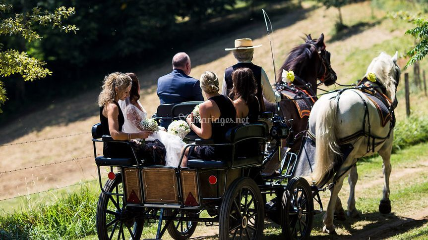 Bespoke Events and Weddings