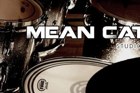 Mean Cat Studio