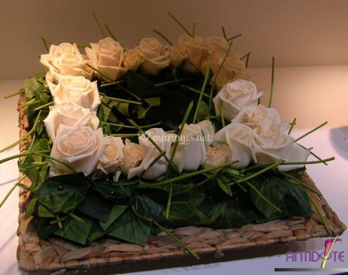 Carré de roses blanches