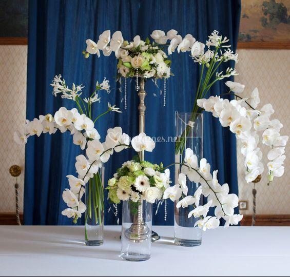 Décor de buffet orchidée
