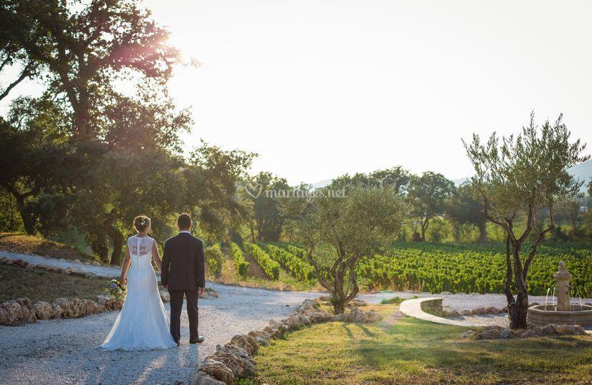 Wedding F&A Var