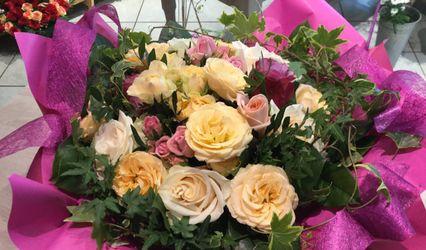 Fleurs de France 1