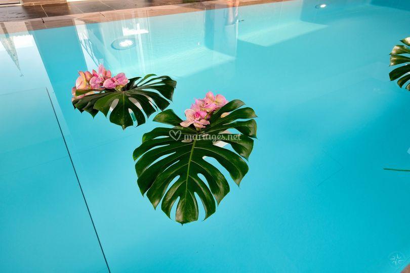 Décoration de piscine exotique