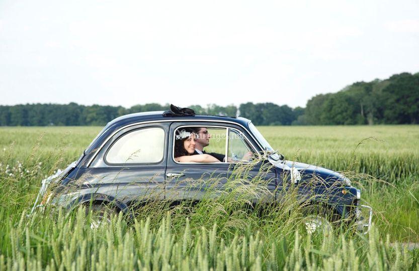 Fiat 500 champêtre