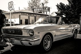 Mustang 13340