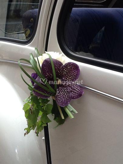 aur u00e9lia fleurs cr u00e9ation