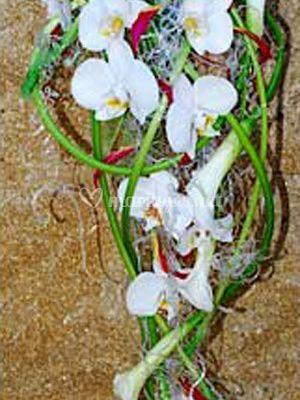 Bouquet chatoyant