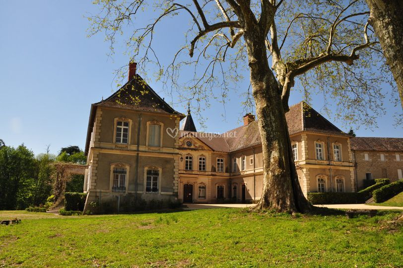 Château et terrasse Glycines