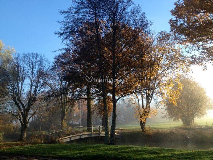 L'automne, magnifique
