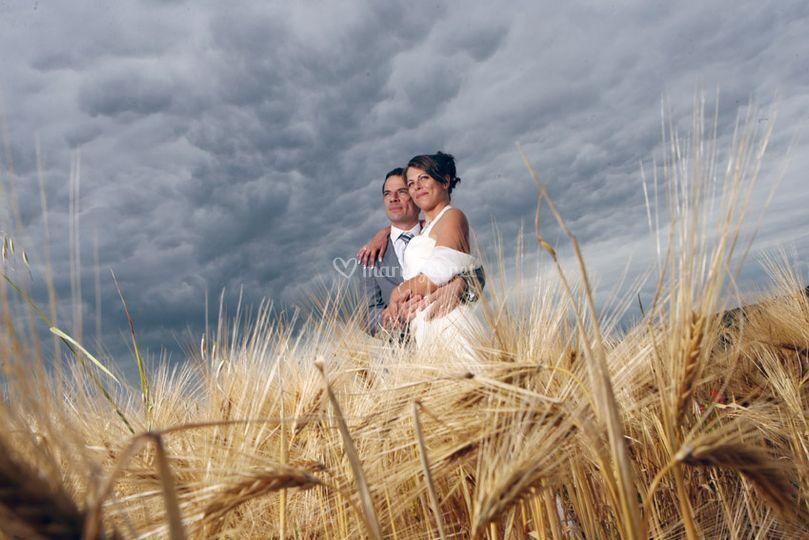 Mariés dans le champ