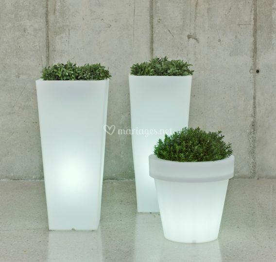 Pots light