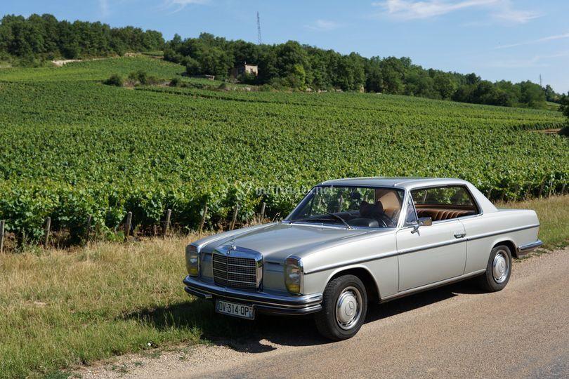 Mercedes 250CE dans les vignes