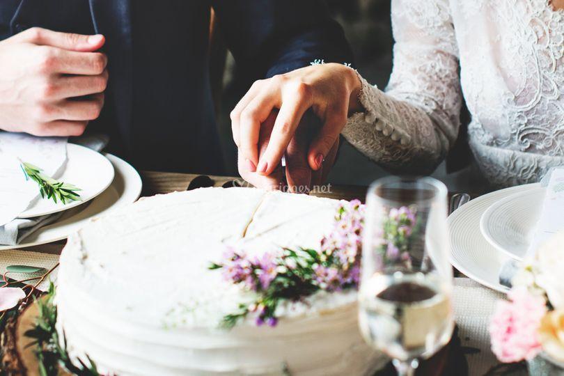 Couple découpe gâteau