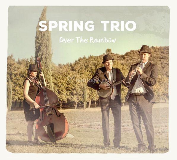 Disque spring trio