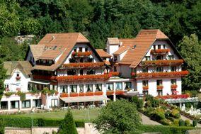 Hôtel des Vosges