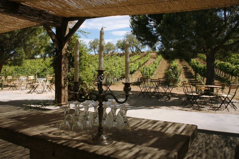 Terrasse des Vignes