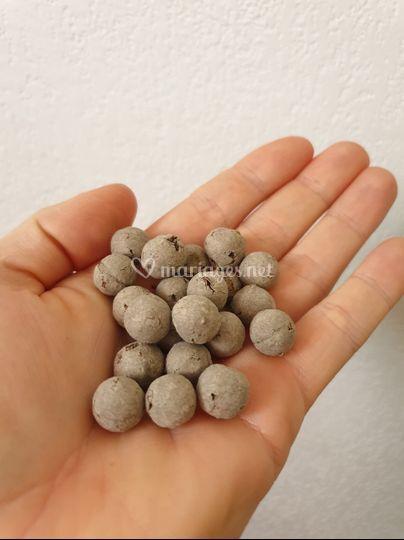 Balles de Graines