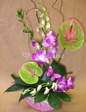 Composition florale exotique