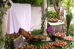 Buffet Garden Party sur Dany's Traiteur