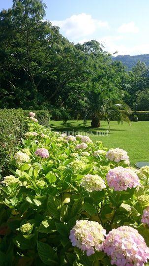 Jardin fleuri et arboré
