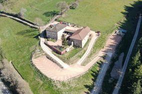 Domaine de Montfriol