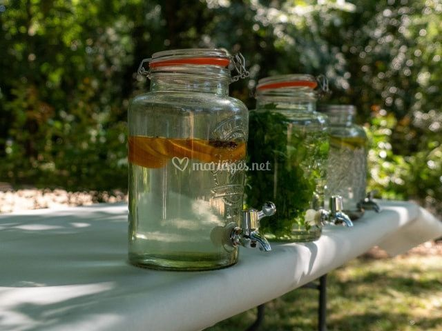 Fontaines eaux aromatisées