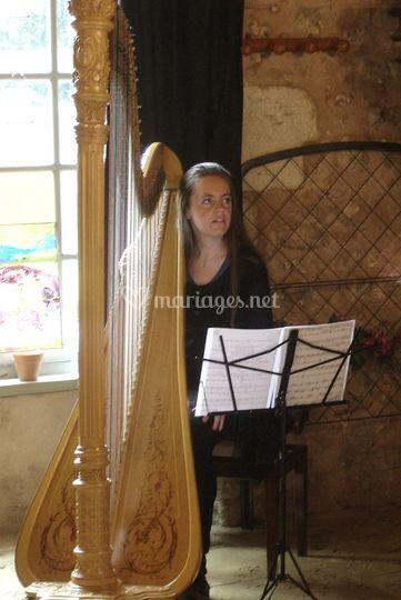 Harpe de concert
