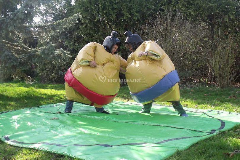 Jeu de sumo adolescents et adultes