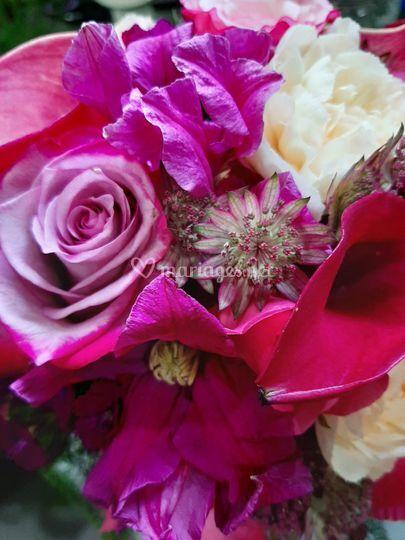 Amandine Fleurs