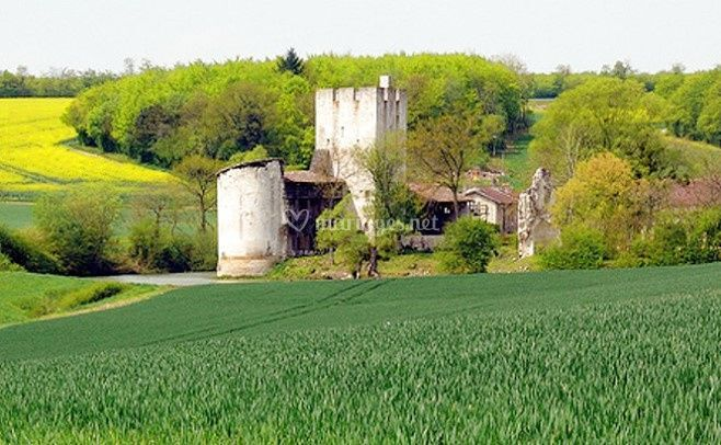 Cadre naturel du château