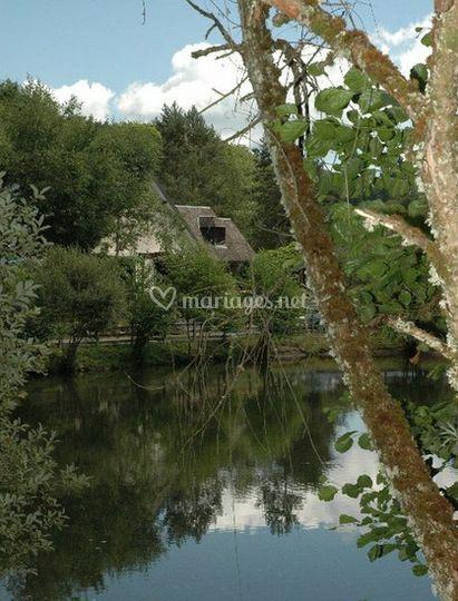 Magnifique environnement naturel pour vos invités