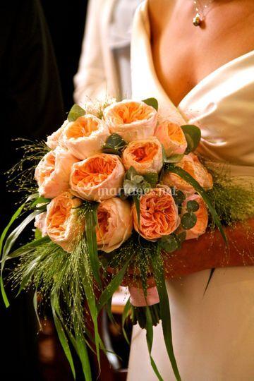 Roses Davis Austin