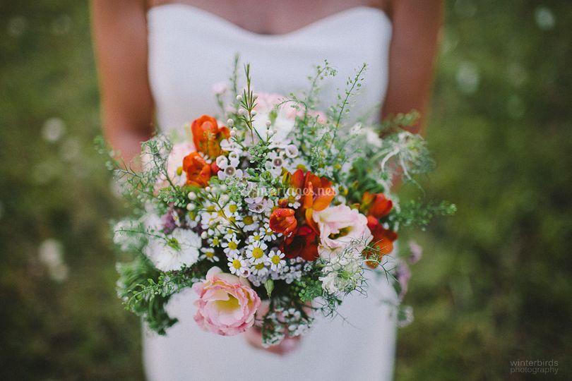 Amariline Fleurs