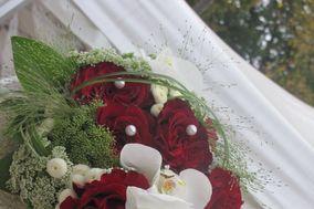 Aux Fleurs d'Amél'ys