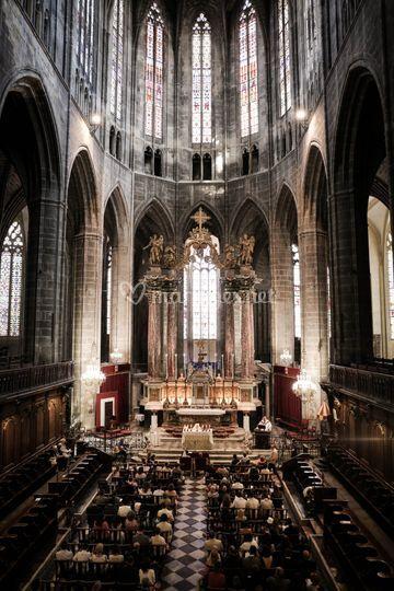 Cathédrale de Narbonne
