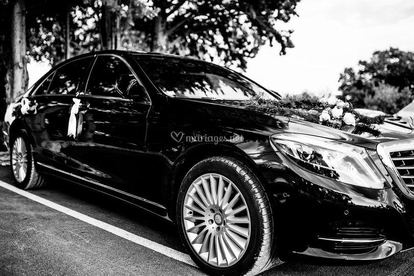 AMP Limousine