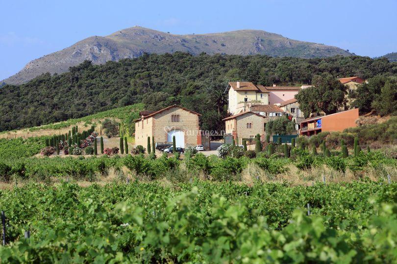 Domaine de Bellavista