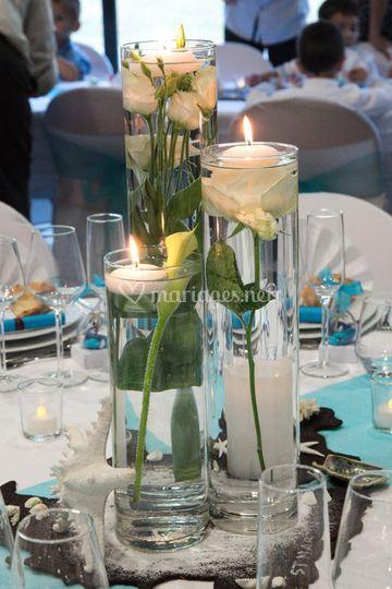 Trio de vase, fleurs immergées