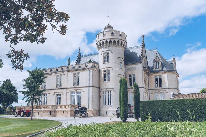 Château Pape Clément - vignes