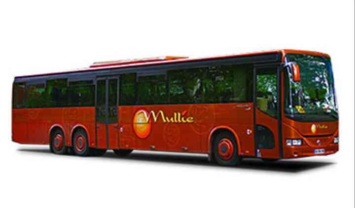 Bus mariage