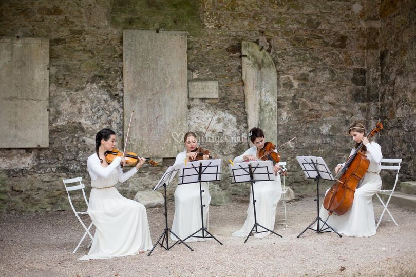Ivana String Quartet