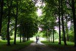 Mariage parc