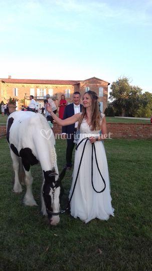 Photo avec le cheval
