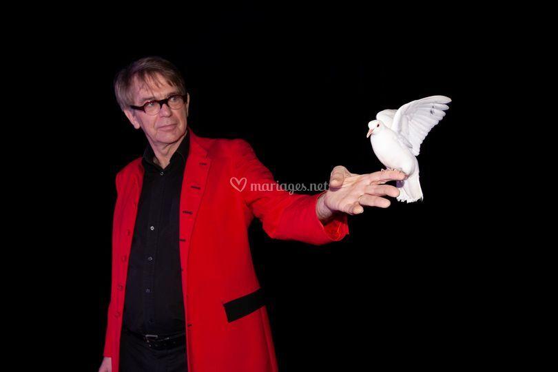 Bernard magicien ARTS